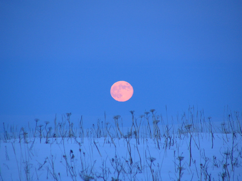 Moonrise at Izembek Refuge