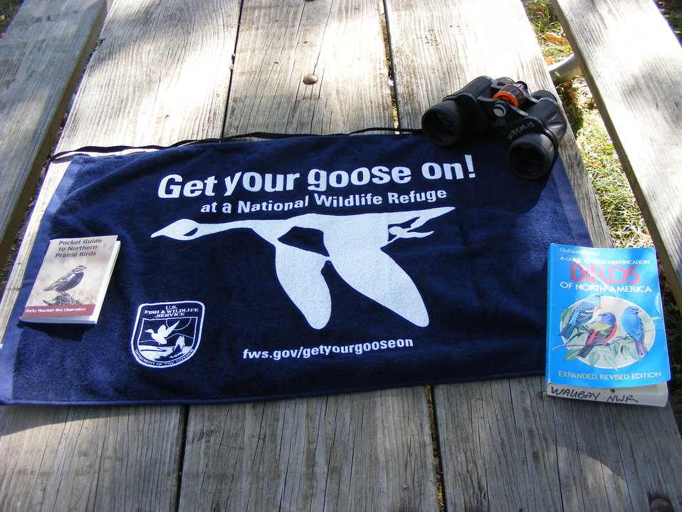 Birding - Get Your Goose On! Style