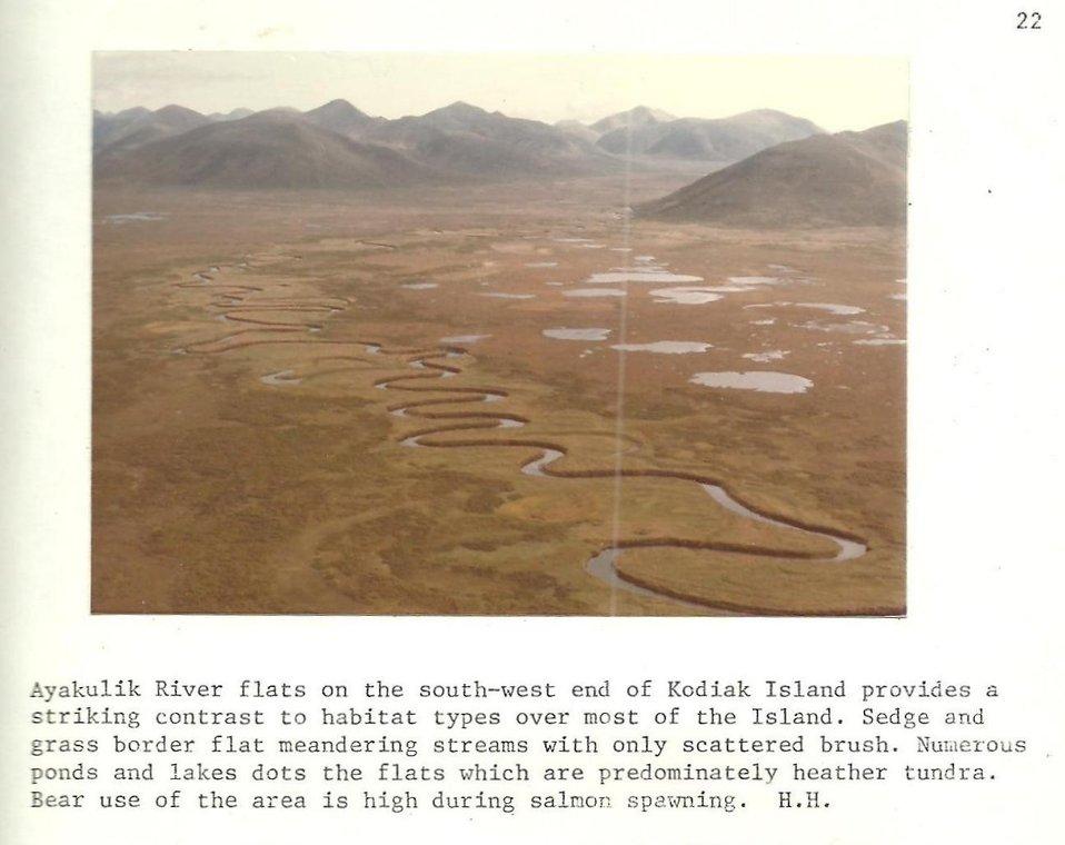 (1979) Ayakulik River