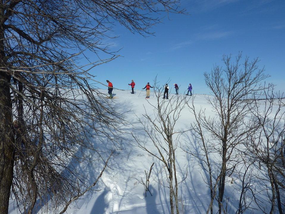 Snowshoers in Des Lacs NWR