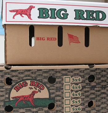 RECALLED – Big Red