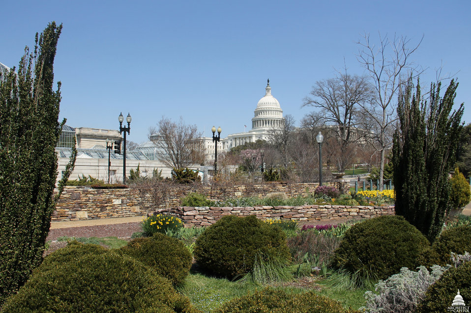 View of Capitol from Bartholdi Park