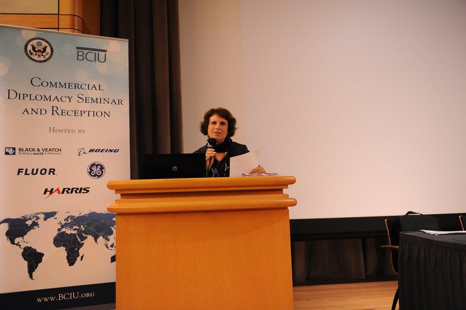 Special Representative Hariton Delivers Remarks at a Commercial Diplomacy Seminar