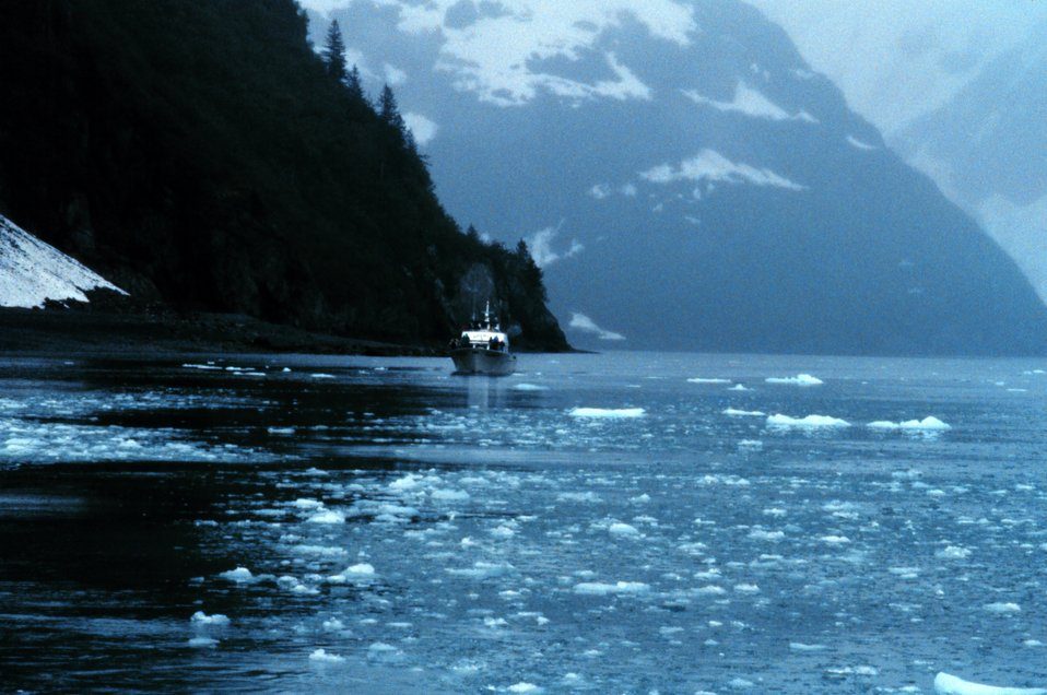 Cruise boat dwarfed in Kenai Fjords