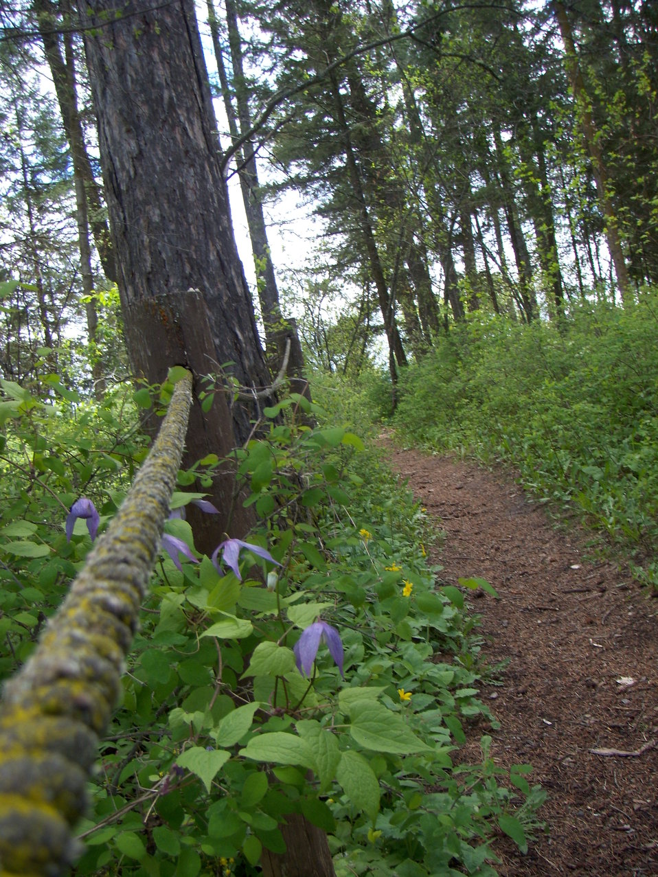Nature Trail at the Creston National Fish Hatchery
