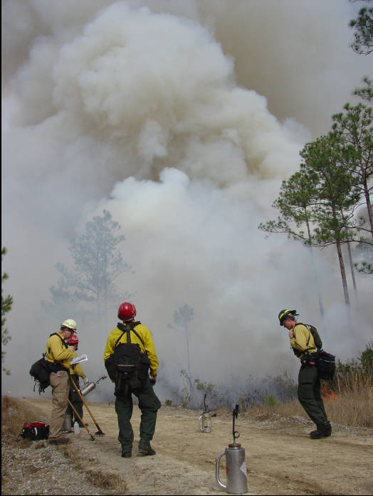 PFTC prescribed fire training