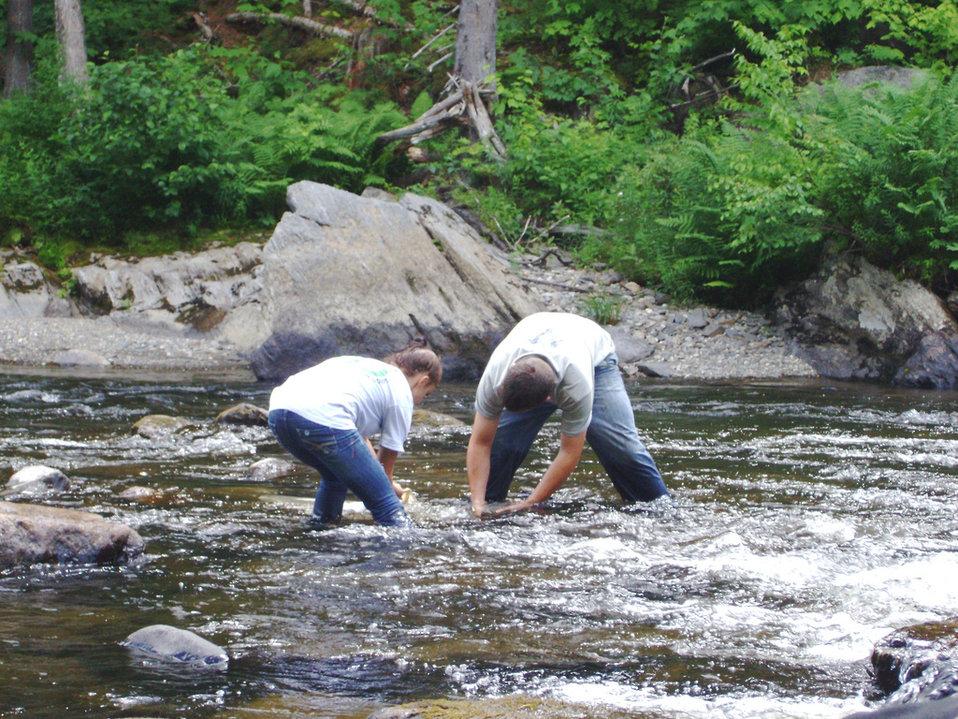 Looking for salamanders