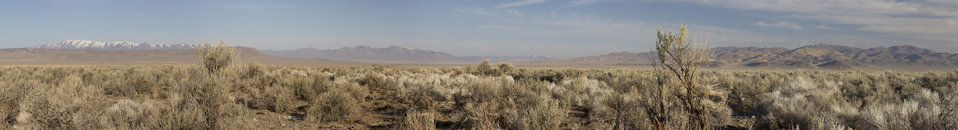 Panoramic View of Sagebrush Habitat, Central Nevada