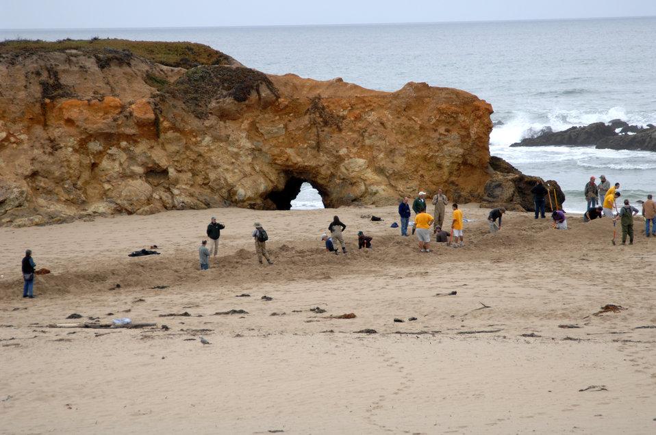 Pescadero Breach 10