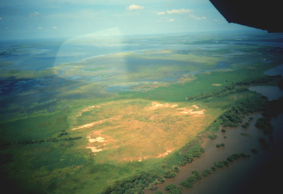 Light-colored area is dredge material deposited during maintenance of channels in Mississippi Delta.