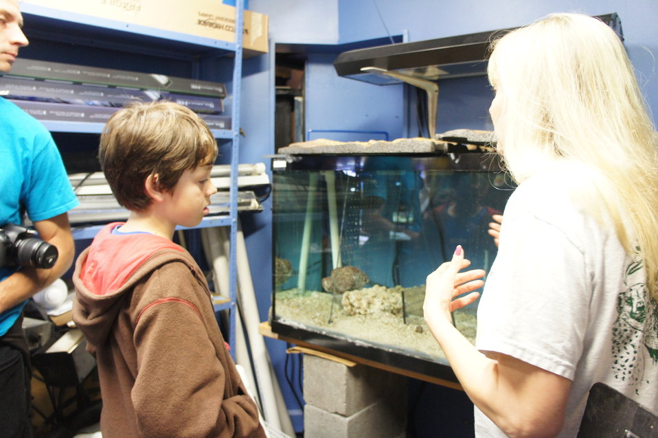 'Save the Nautilus' co-founder visits Smithsonian National Zoo