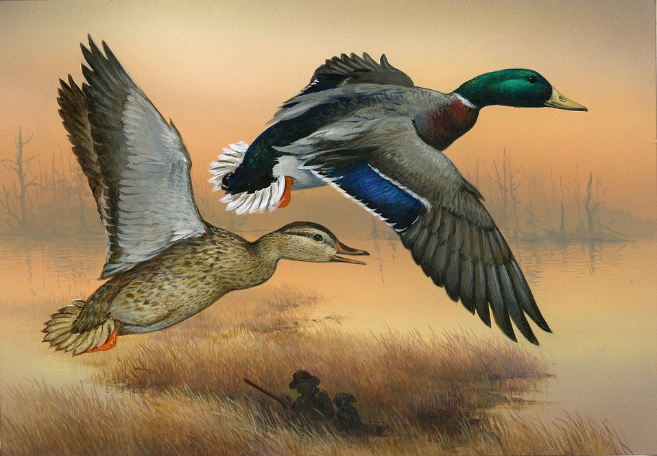 2013 Duck Stamp Contest Submission 198