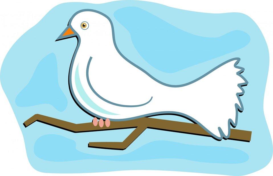 White dove clip art
