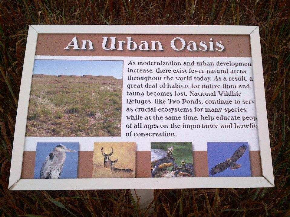 Sign - Urban Oasis