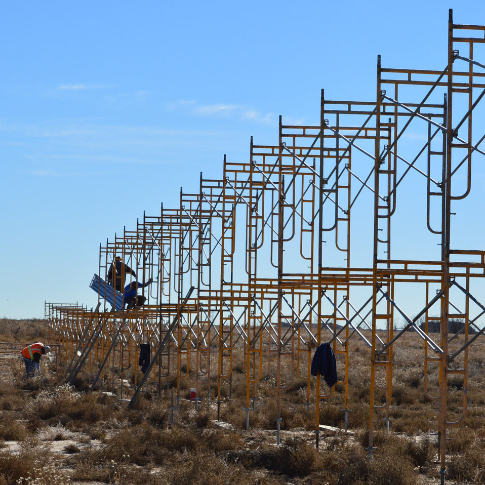 World Wildlife Fund (WWF) and International Fund for Animal Welfare (IFAW) constructing scaffolding which will display a life sized herd of elephants.