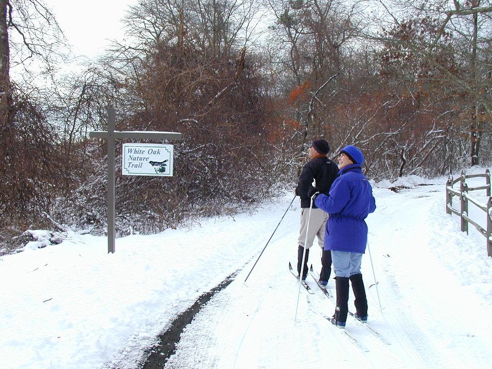 Skiers at Wertheim