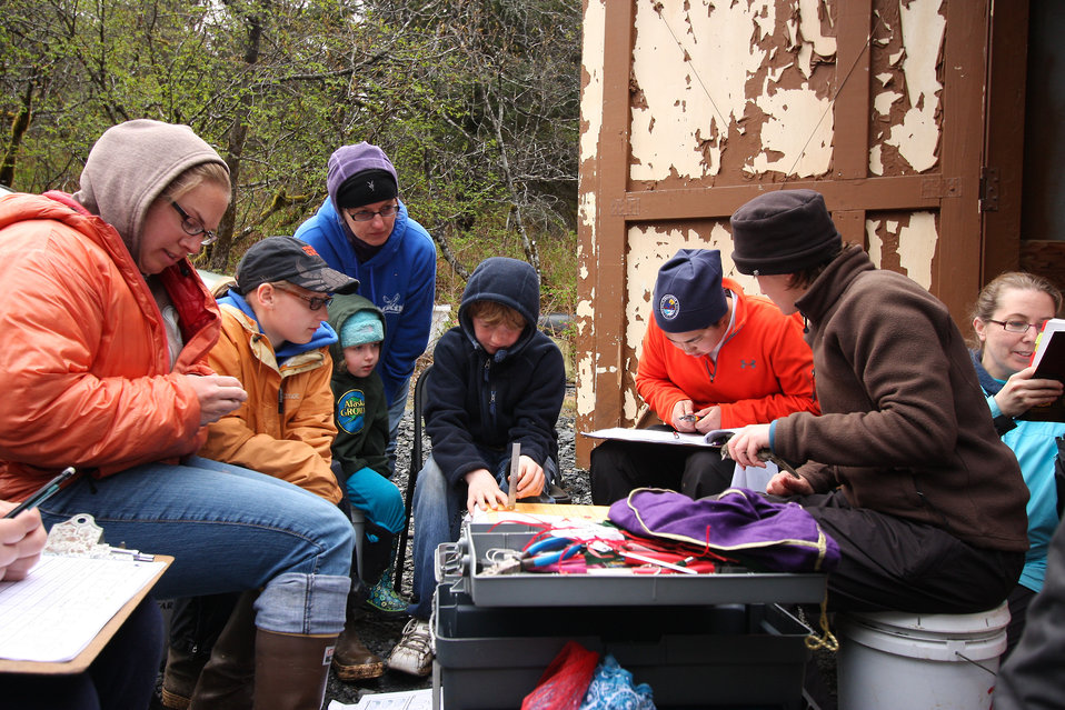 Volunteers learn to identify landbirds at a banding station