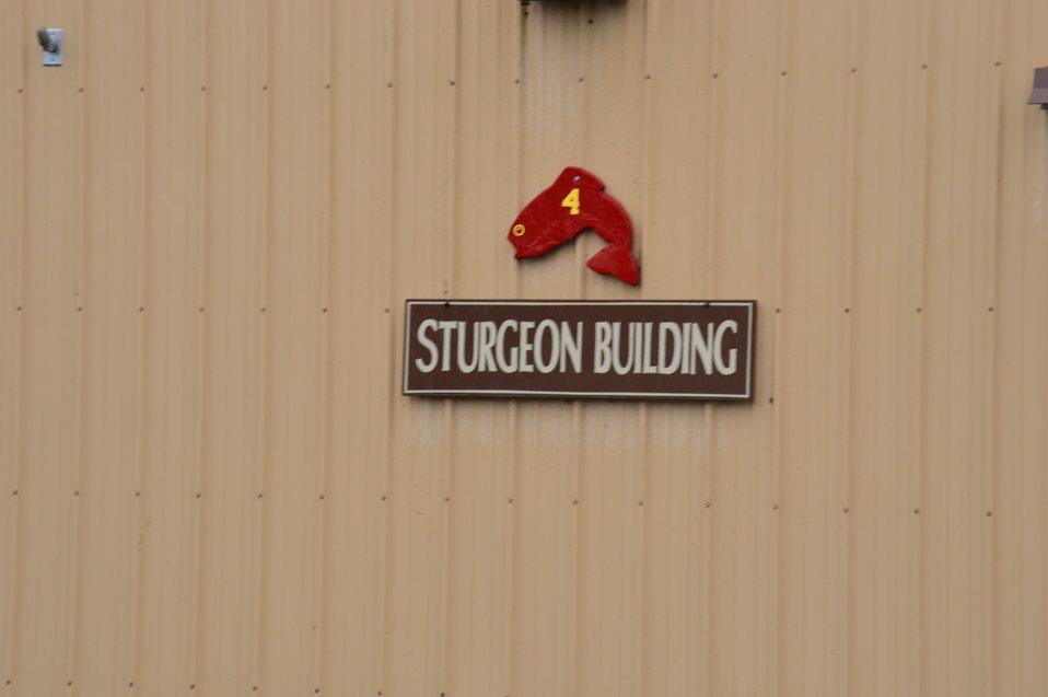 Sturgeon Building