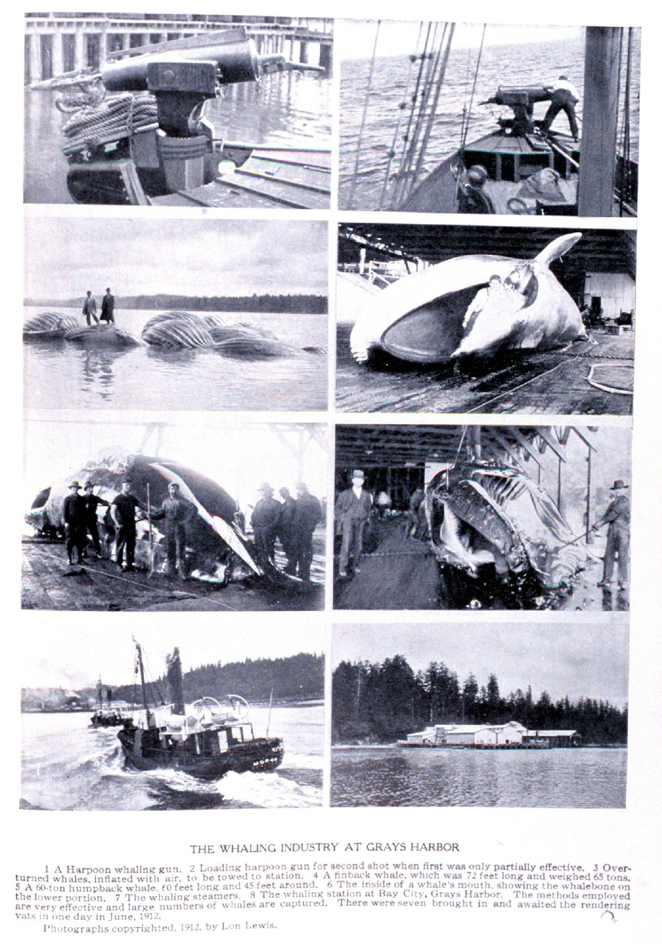 'The Whaling Industry at Grays Harbor'. In:  'Puget Sound and Western Washington  Cities-Towns Scenery', by Robert A. Reid, Robert A. Reid Publisher, Seattle, 1912.  P. 157.