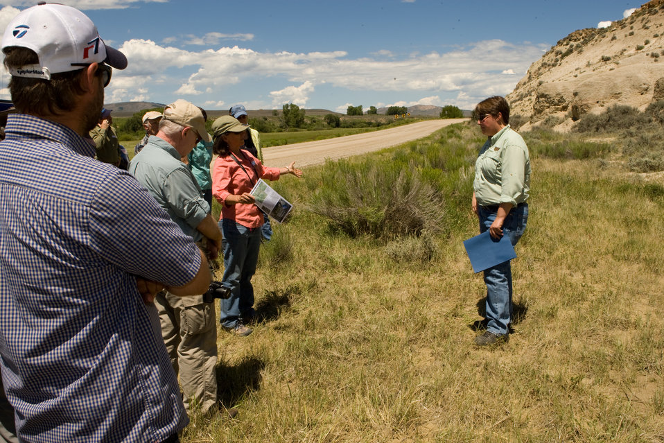 Colorado Rare Plant Conservation Initiative