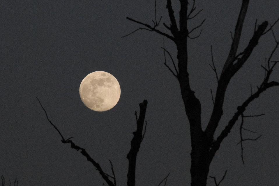 Moon over Ridgefield