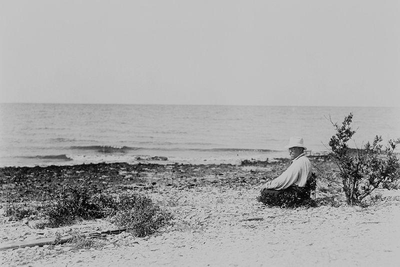 Teddy Roosevelt on Bird Island