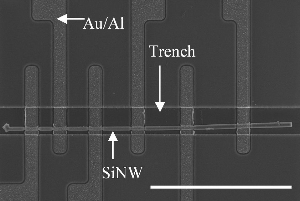 Placing Single Nanowires, NIST Makes the Connection