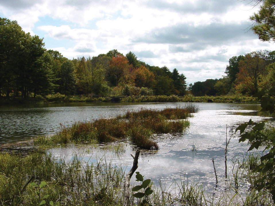 Photo of the Week - Peverly Pond (NH)