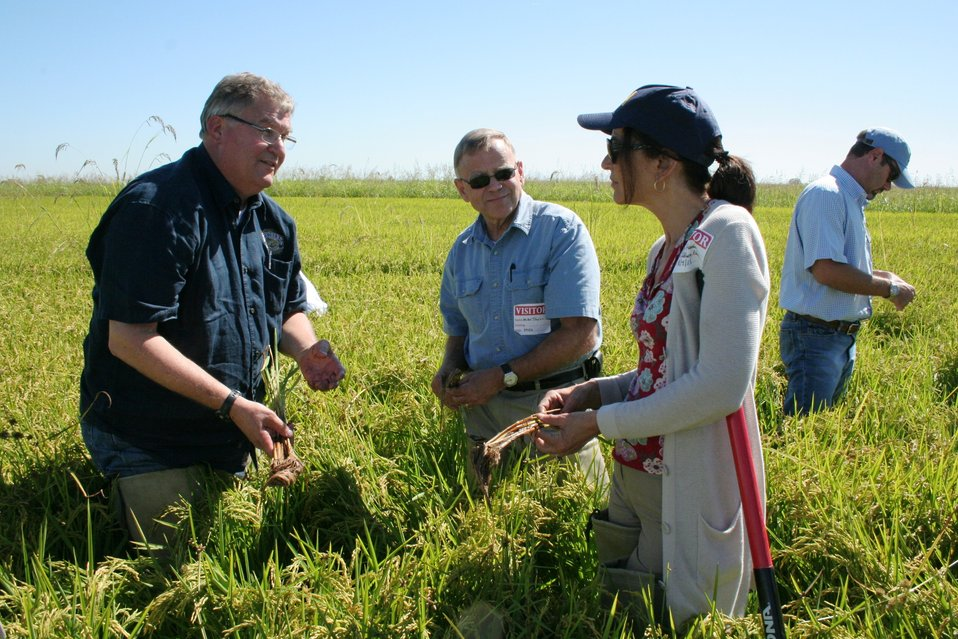 FDA's Rice Tour: Looking for Insights on Arsenic (0860)