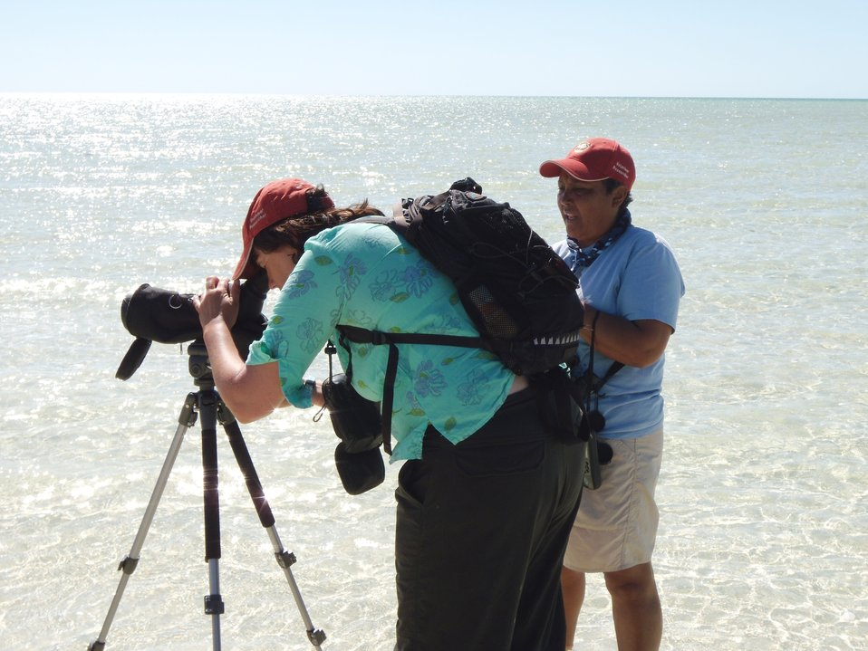 Sue Abbott, Bird Studies Canada; and Predensa Moore, Bahamas National Trust