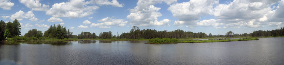 Panorama of Seney National Wildlife Refuge