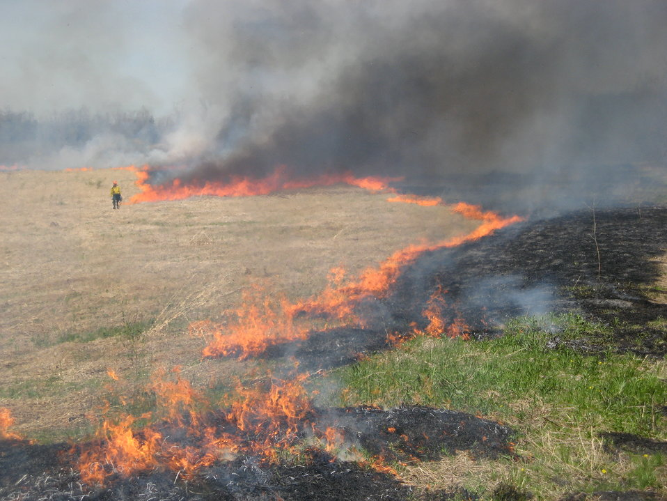 Controlled burn at Iroquois National Wildlife Refuge