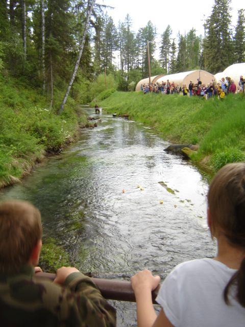 Third Graders Participate in the Duck Race during the Fish Fun Fair Annual Event at the Creston National Fish Hatchery