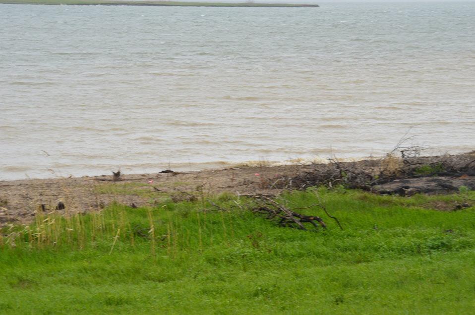 Shore of Audubon Lake