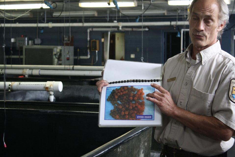 Nashua National Fish hatchery