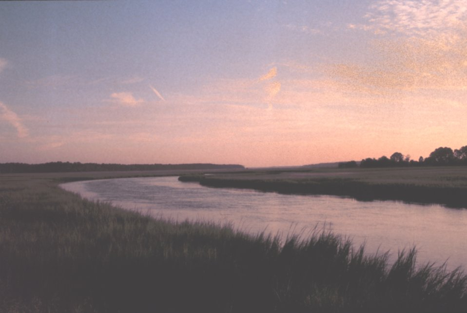 Sunrise over the salt marsh.