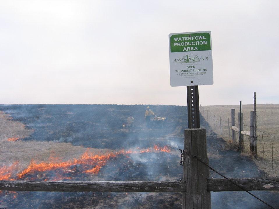 Habitat Enhancement