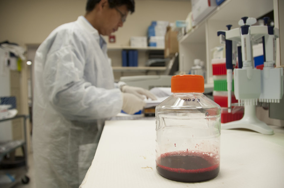 Blood Research: Saving Lives (8455)