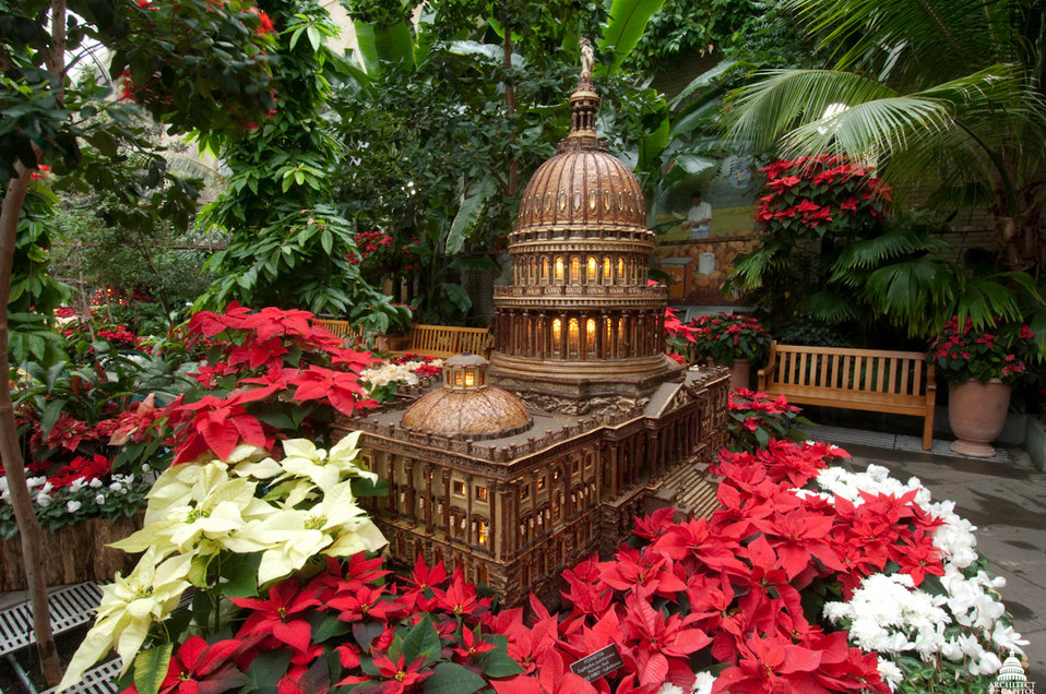 Season's Greenings at the U.S. Botanic Garden