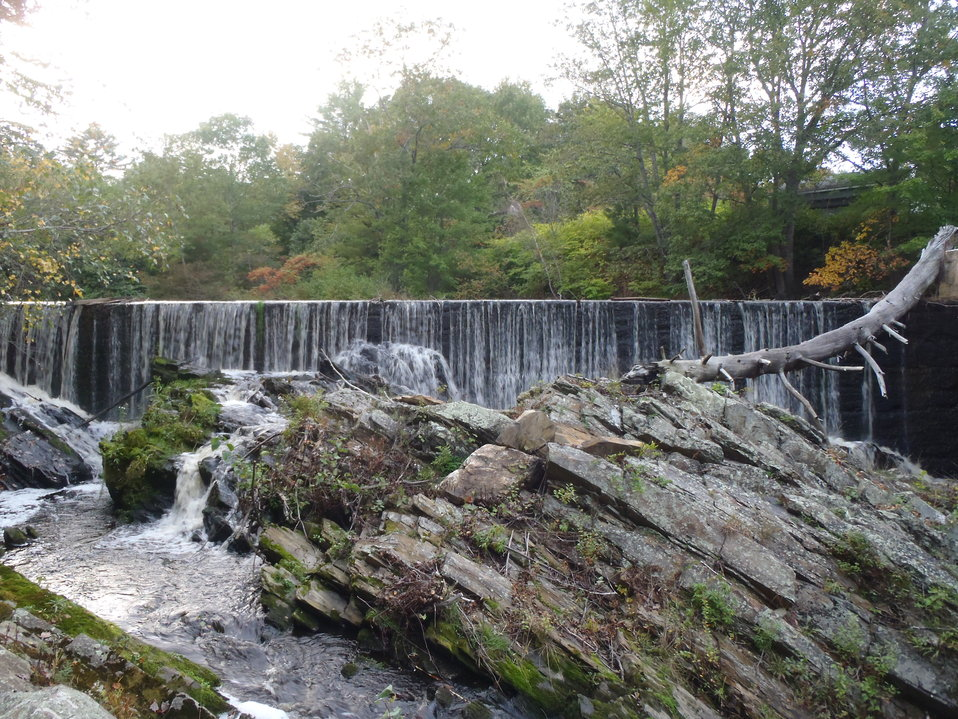 Small dams are barriers to fish
