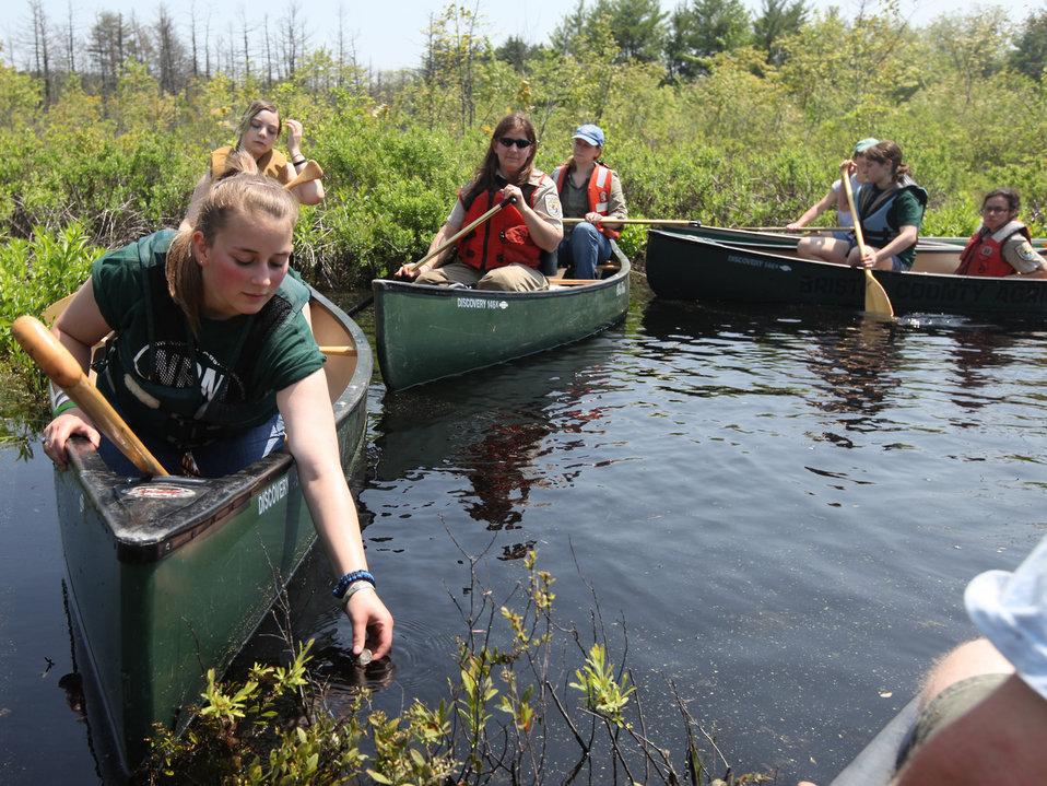 Releasing Blanding's Turtles