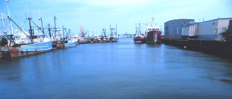 New Bedford fishing boats.