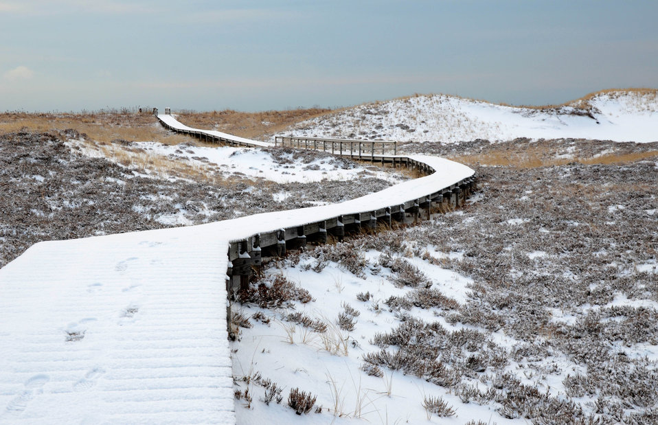 Winter boardwalk