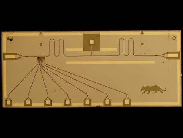 Quantum Bus Device