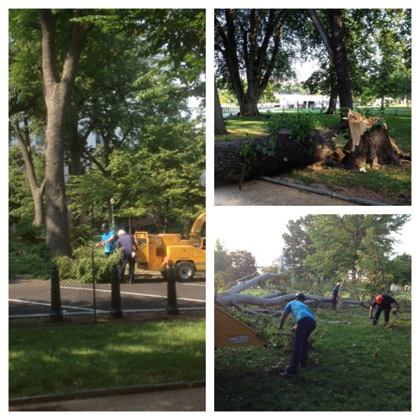 AOC crews worked around the clock to clean the grounds from #derecho. Capitol ready for 4th.