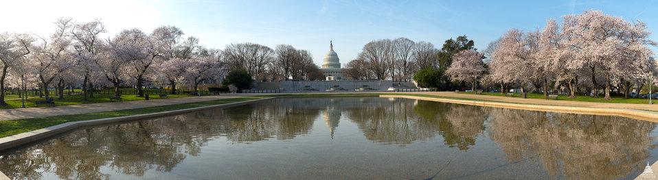 Senate Park in Spring
