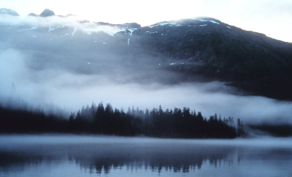 Fog and mist reminiscent of an impressionist painting overlying waters, trees, mountain valleys of Prince William Sound