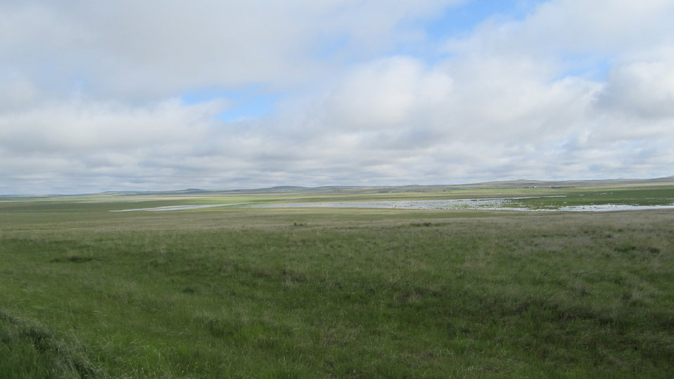 South Shore of Unit I