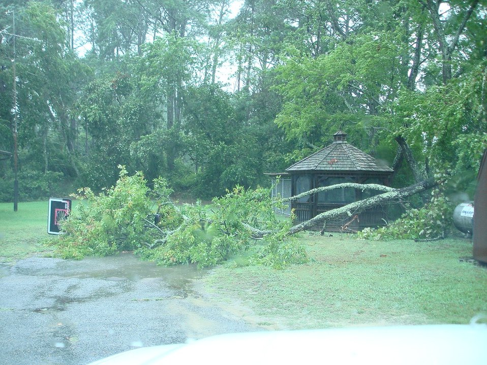 Trees down and debris at refuge housing.