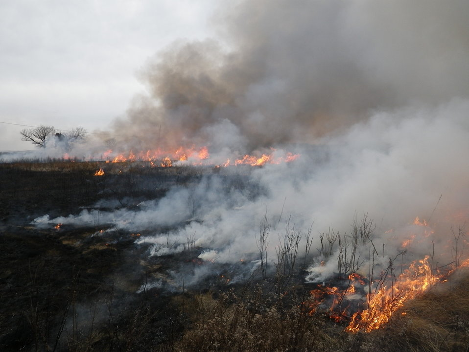 Controlled burn at Eastern Neck National Wildlife Refuge